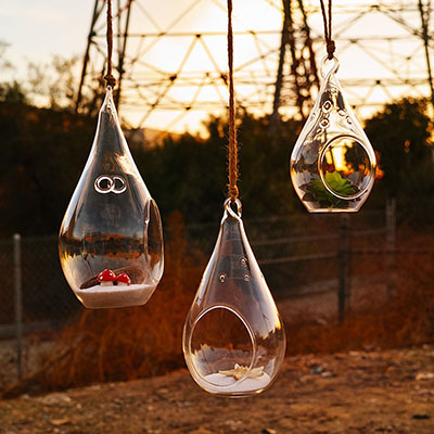 Hanging Candle Holders & Hanging Terrariums