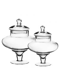 glass apothecary jars set of 2