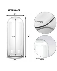 14 inches glass domes