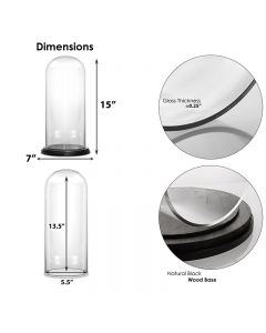 """Glass Dome Cloche Bell Jar with Wood Base, H-14.5"""", Pack of 4"""
