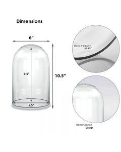 glass domes cloches
