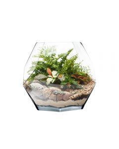 glass terrarium geometric prism vase