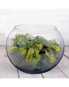 large glass bubble bowl