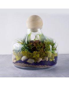 glass terrarium vase