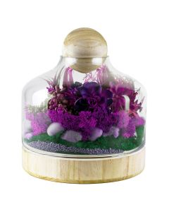 glass terrarium vases with wood stopper and base