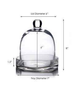 glass cloche dome with glass tray