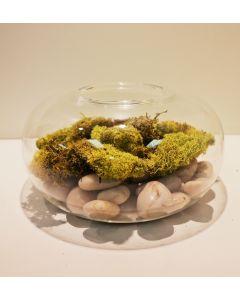 Mini-Flat-Sphere-Habitat-Terrarium-Tea-Light-Holder-Duo-Use-gch901-8