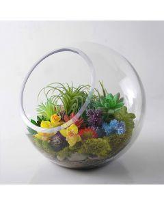 slant-cut-glass-bubble-bowl-terrarium