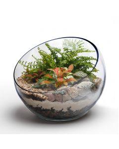 glass-pod-vase-plant-terrarium-containers-gcu065