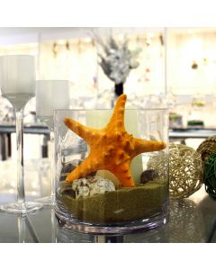 vase-filler-colored-knobby-starfish-VFSF01/05OR