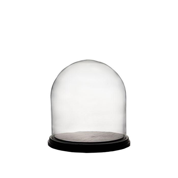 Glass Dome Cloche Bell Jar Terrarium w/ Black Wood Base, H-11