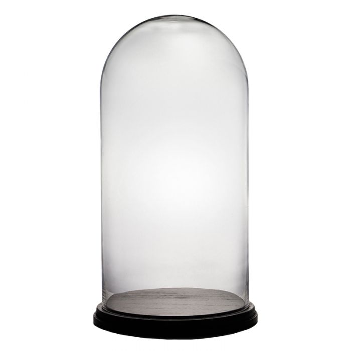 Glass Dome Cloche with Wood Base Matte Black H-21