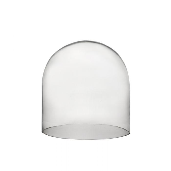 glass-dome-terrarium-gdo106