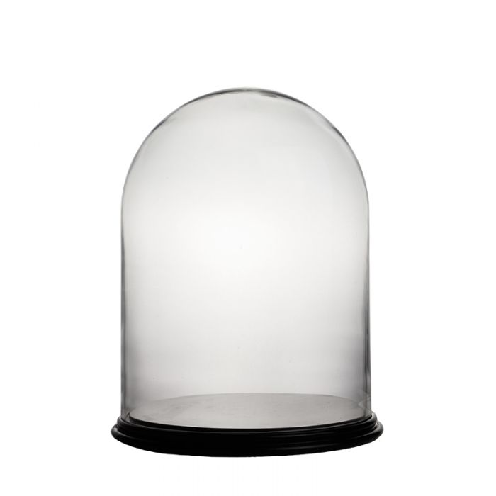 glass-dome-terrarium-with-wood-base-gdo107wb