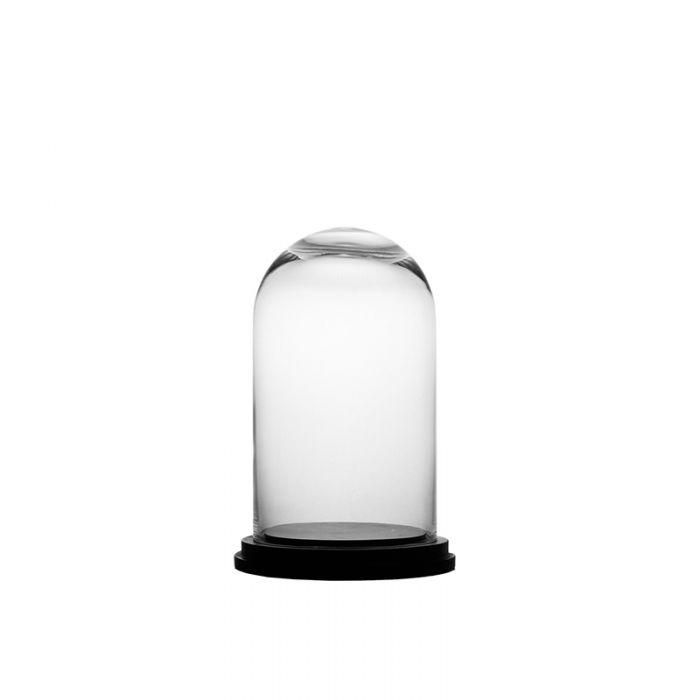 glass-dome-terrarium-gdo110-wb001-05bk