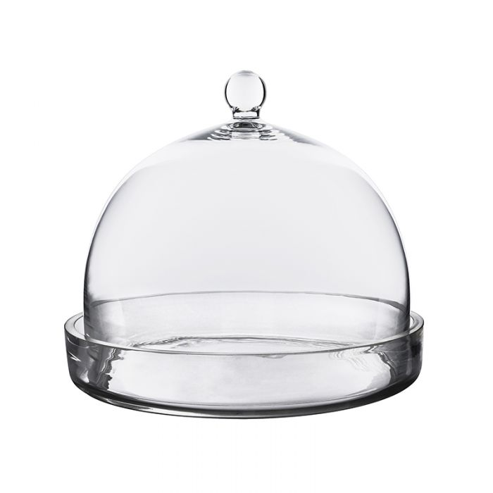 glass-cloche-bell-terrarium-with-tray-gcl109