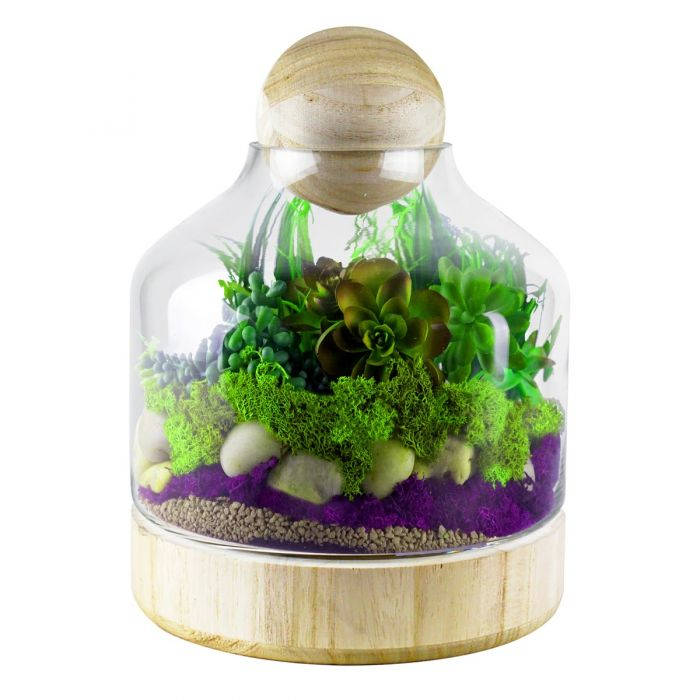 Glass Dome w/ Wood Base & Stopper H-9.5