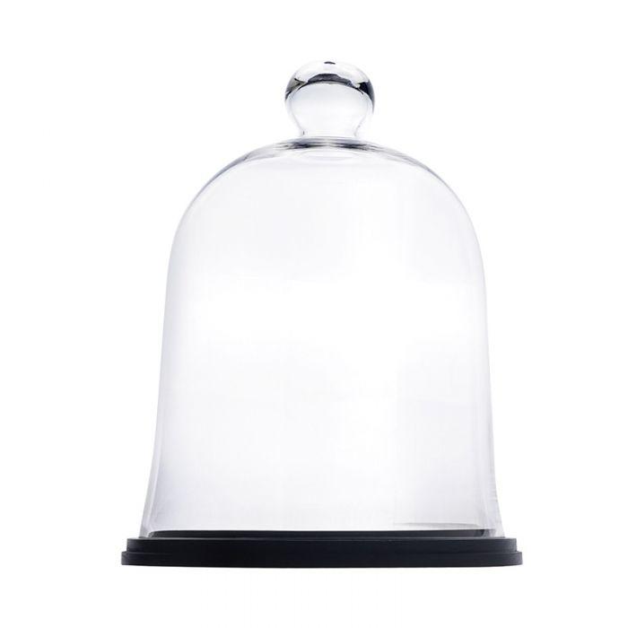 glass cloches dome