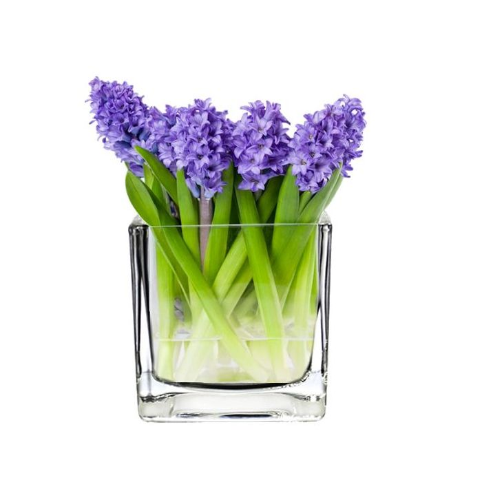 Glass Cube Vase H-4