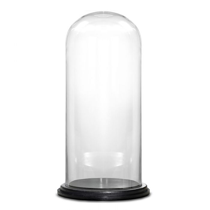 Glass Dome Cloche Bell Jar with Wood Base, H-14.5
