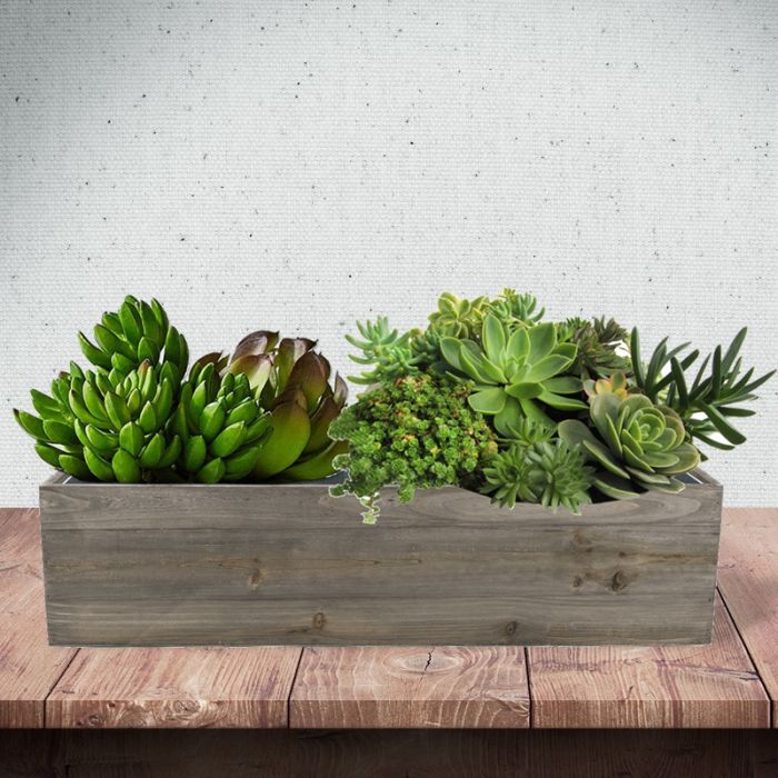 wood--rectangle-box-planters-with-zinc-liner-ZWCB062406LB
